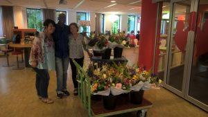 bloemen voor nieuwe mw sept